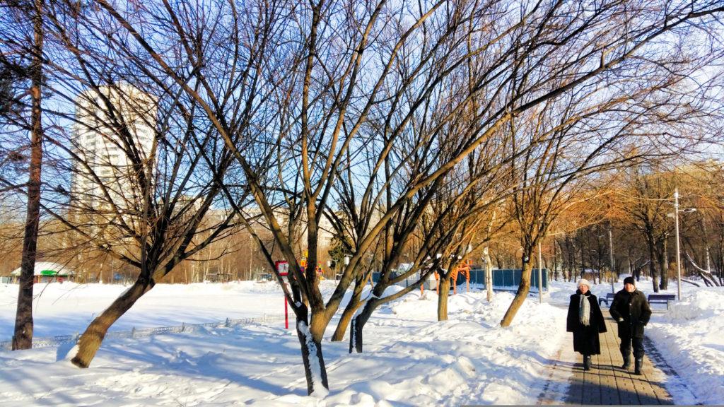Лианозовский парк
