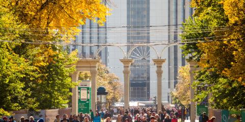 день народного единства парк